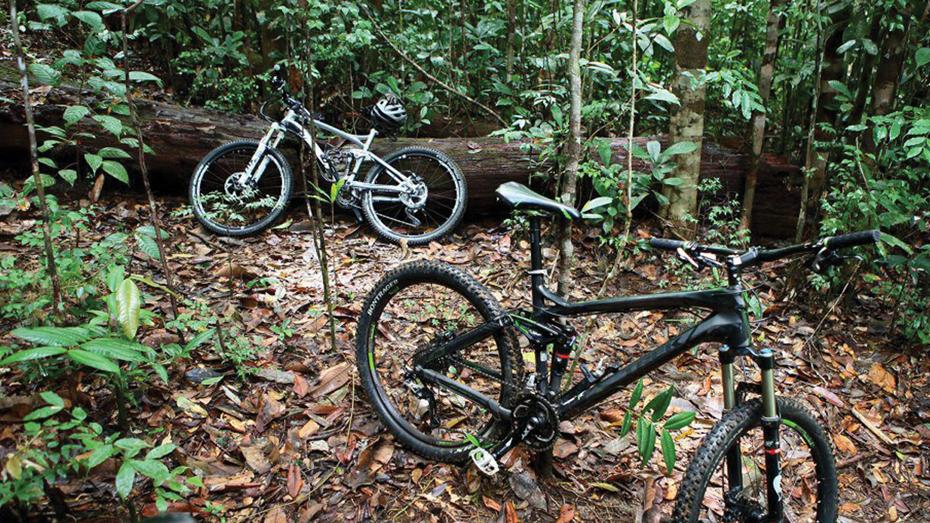 bike-story-image