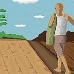 Story image__0020_Smarter Farming